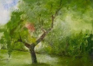 Neustadt bei Coburg - Der Stadt-Birnbaum